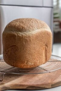A loaf of fresh bread machine bread on a rack, cooling.