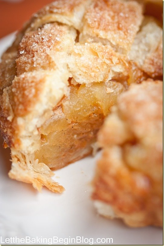 Apple Caramel Hand Pies/Tarts