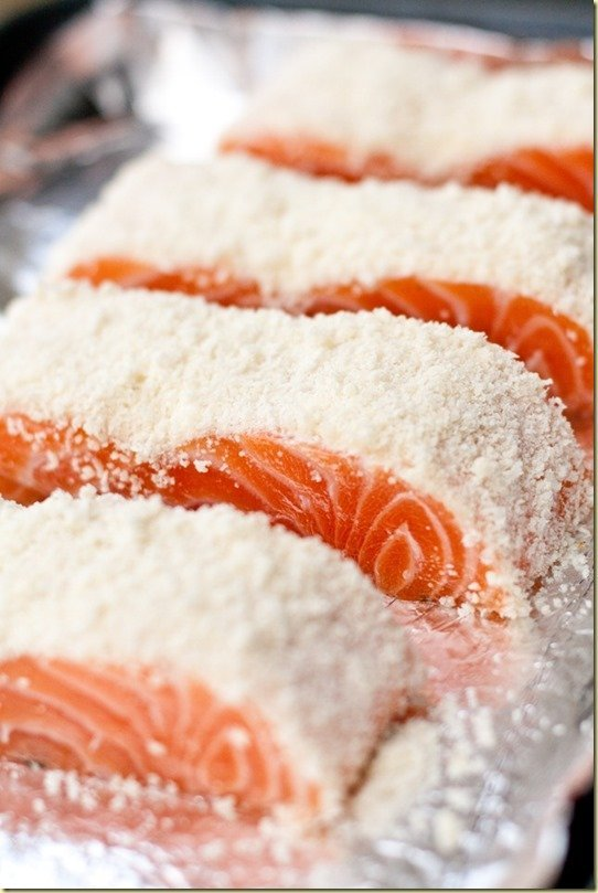Parmesan Crusted Salmon - the beautiful parmesan crumb crust imparts lots of parmesan flavor to the fish and the genius way of controlling the temp when cooking it will yield the most flavorful and juicy salmon fillet.