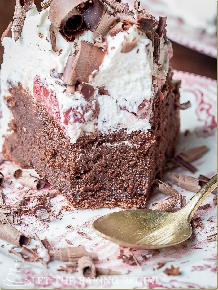 Fudgy flourless Chocolate Cake topped with Whipped Cream & Boozy Cherries, this version of Black Forest Cake will make your tastebuds sing! by LetTheBakingBeginBlog.com