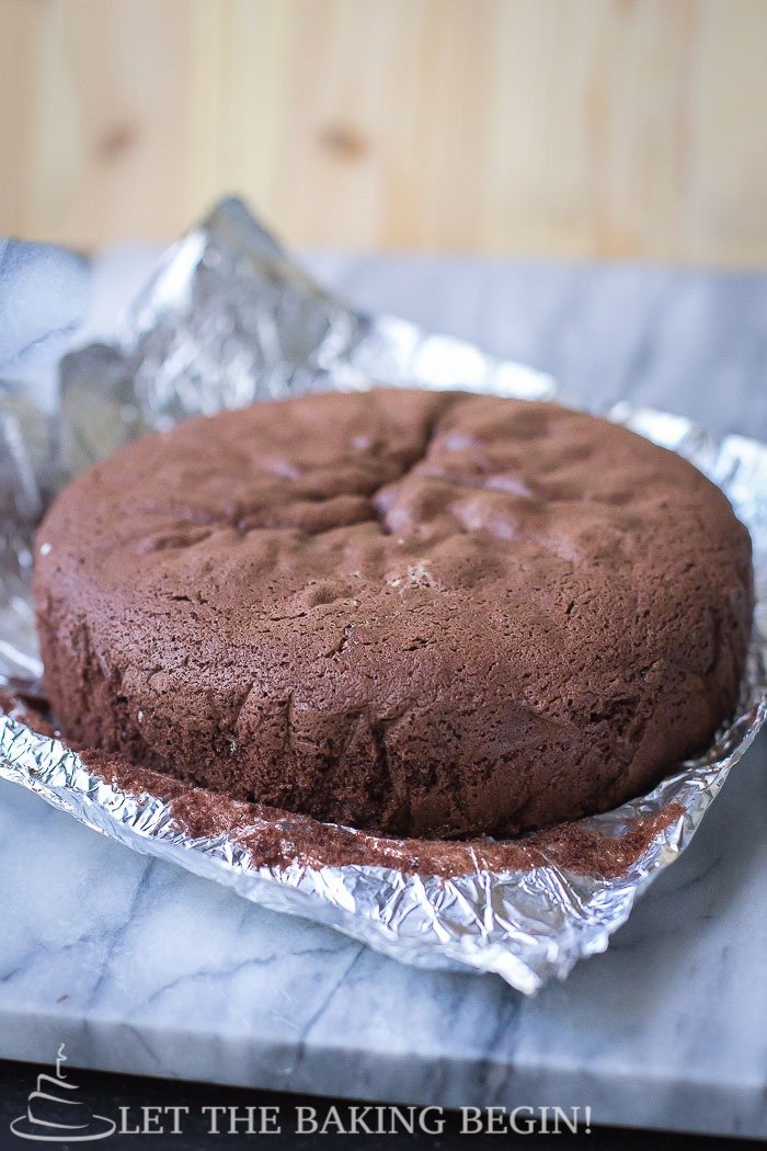 Chocolate Sponge Cake - Fluffy, moist and perfectly leveled – this ...