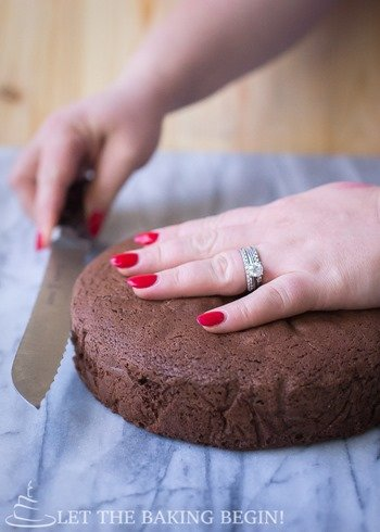 Chocolate Sponge Cake - Fluffy, moist and perfectly leveled – this sponge cake recipe is the one to have. Find out my tips and tricks to perfect sponge cake every time. - By Let the Baking Begin Blog - @Letthebakingbgn