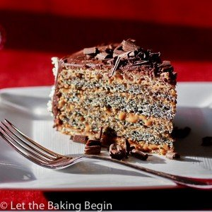 This Poppy Seed cake with Dulce de Leche Buttercream combines all the things I love in a cake, poppy seeds, walnuts, dulce de leche and chocolate | by Let the Baking Begin!