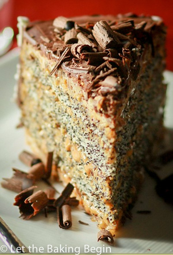This Poppy Seed cake with Dulce de Leche Buttercream combines all the things I love in a cake, poppy seeds, walnuts, dulce de leche and chocolate, kind of hard not to love this kind of combination. |By LetTheBakingBeginBlog.com | @Letthebakingbgn