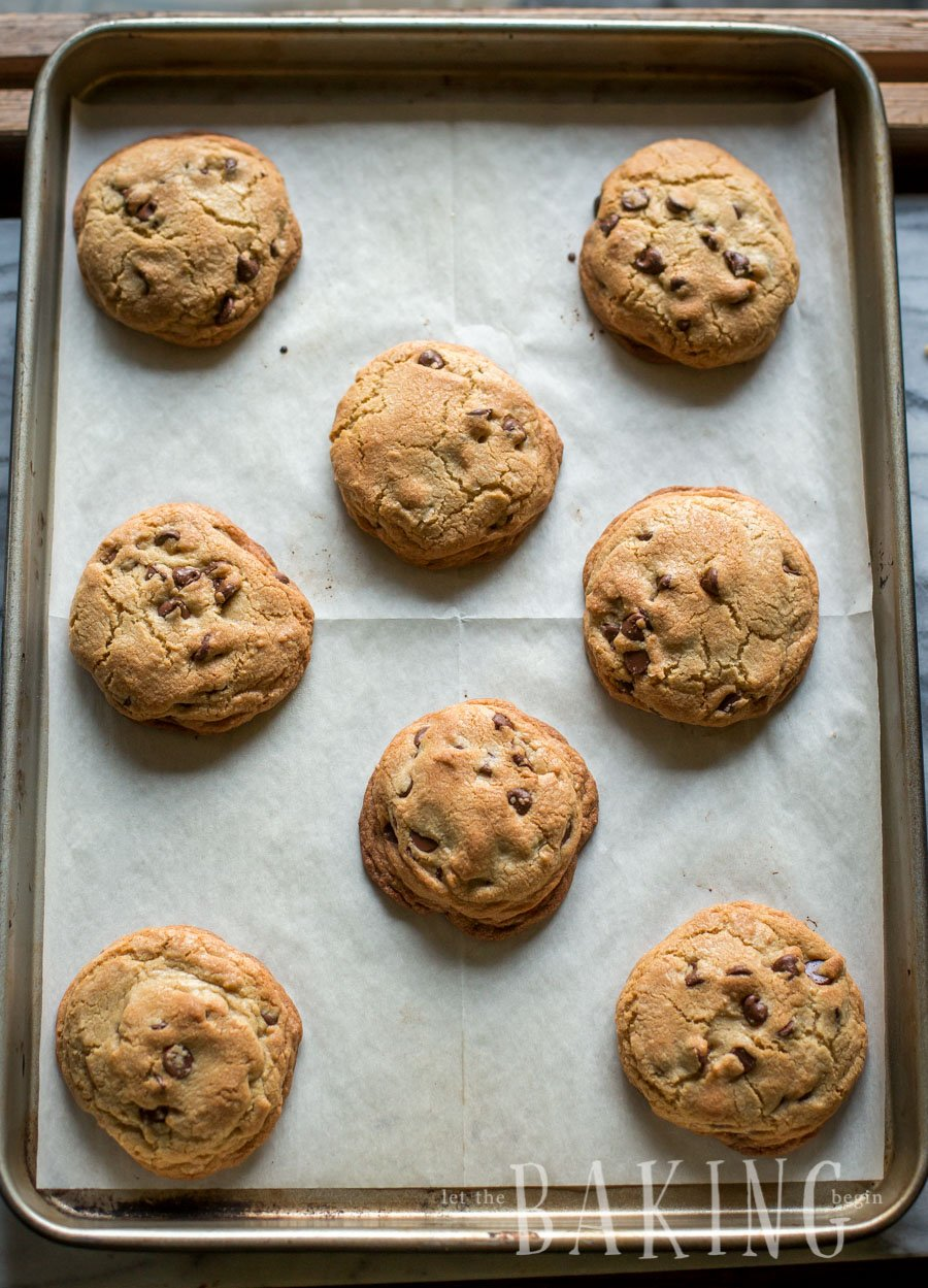 Baked chewy chocolate chip cookies with chocolate morsels on a baking sheet.