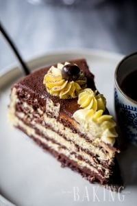 Bird's Milk Cake Recipe (Ptiche Moloko) - Layered Cake of Chocolate Angel Food Cake and Custard Buttercream | By Let the Baking Begin!