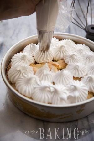 Easy Meringue for Baking   Let the Baking Begin!