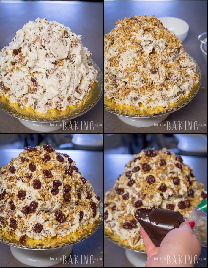 How to continue assembling marble cake by adding sour cream frosting, walnuts,and cherries.