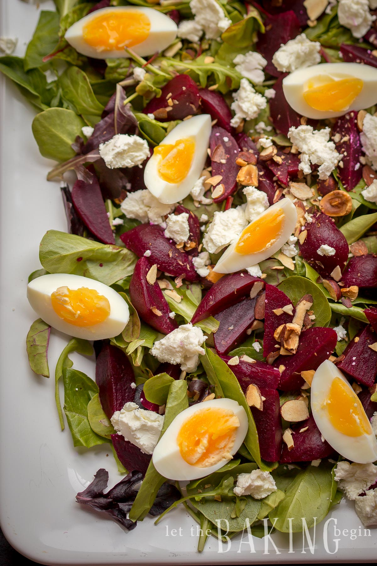 Beet Beet and Goat Cheese Salad with Egg is served on a bed of Spring Mix Salad, then sprinkled with Goat Cheese, Hazelnuts and Egg
