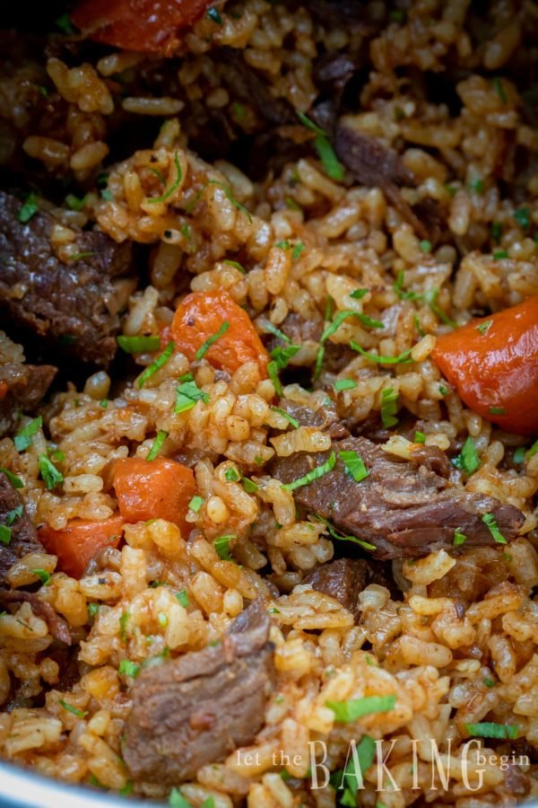 Closeup of beef and rice pilaf with chunks of carrots and a sprinkle of parsley.