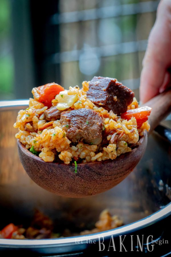 Spoonful of Beef and Rice Pilaf (Plov)