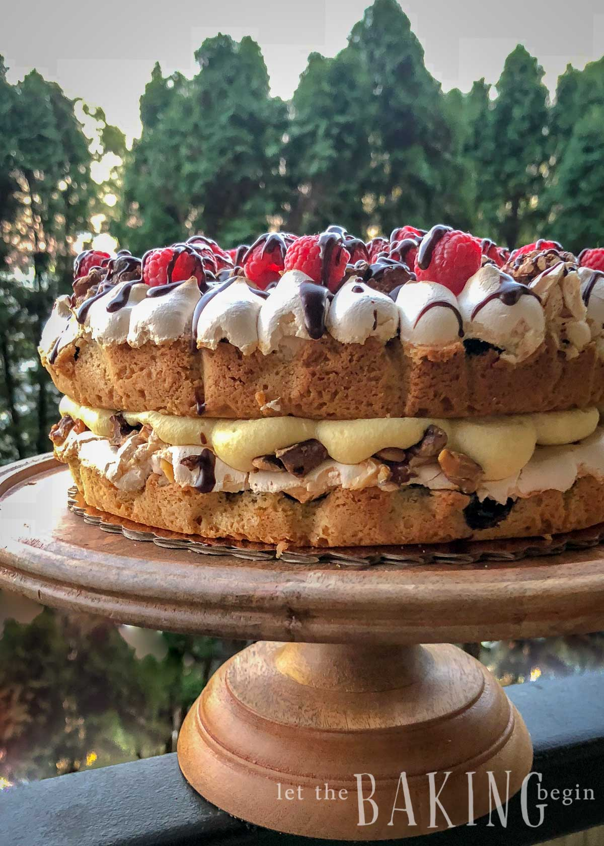 Pani Walewska is a polish cake made with shortbread meringue cake layers, nuts and custard. A family favorite for sure!