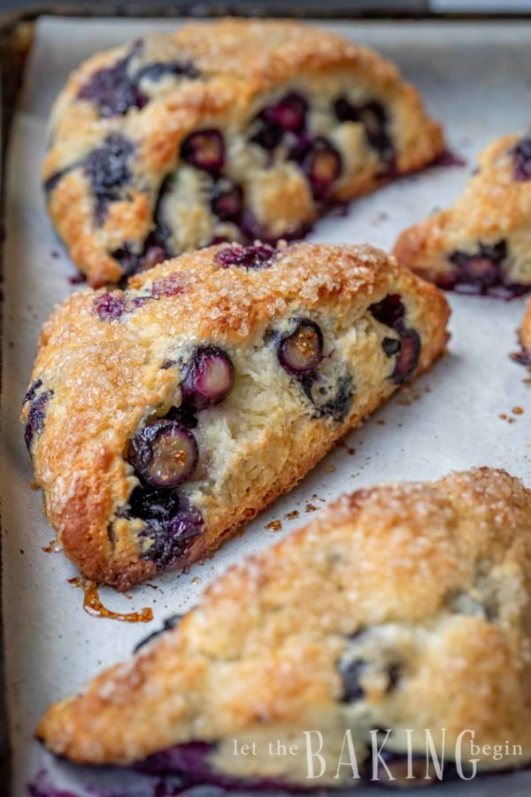 Tender, fluffy and soft blueberry scones on a baking sheet.