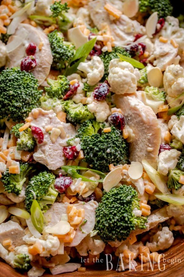 Close up of broccoli and cauliflower salad with cheese and dried cranberries.