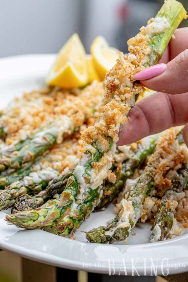 Close up of one asparagus with cheese and Ritz cracker crumbs lifted with fingers off the plate.