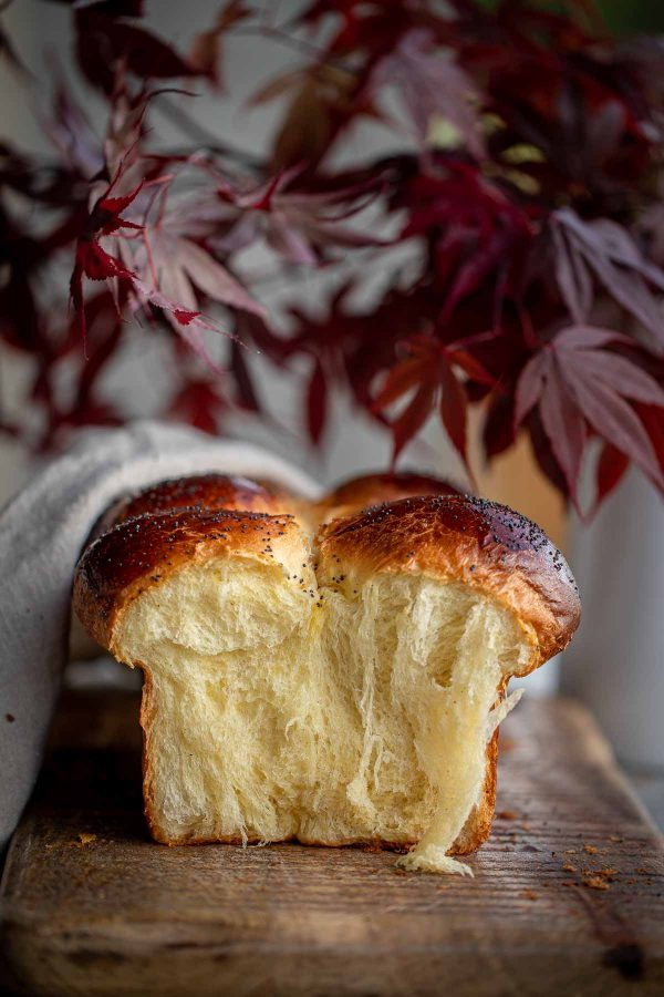 Brioche Buns with a couple bulled off exposing beautiful bread strands.