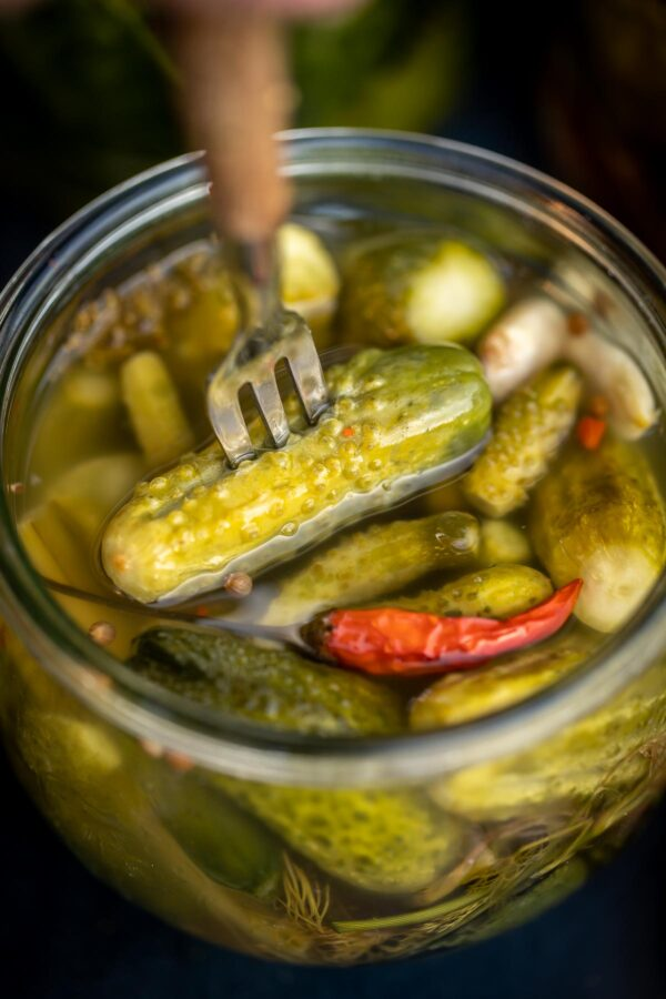 Fork inserted into a pickle from a jar full of pickles, top view.
